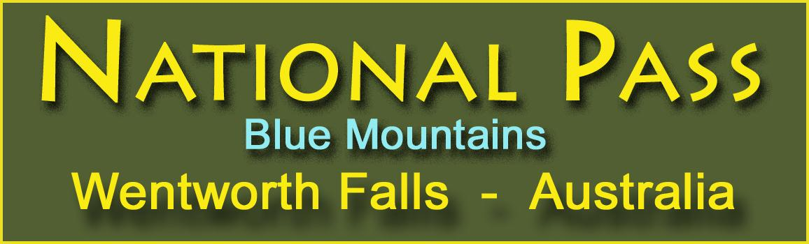 National Pass Logo and Images