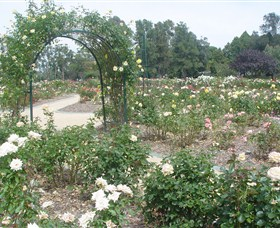 Victoria Park Rose Garden Logo and Images