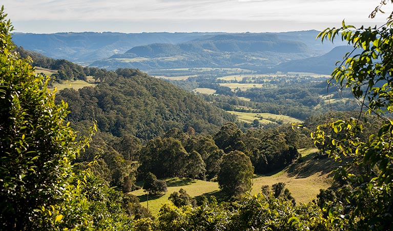 Coast to the Highlands scenic drive – Kangaroo Valley Logo and Images