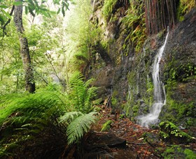 Fairy Bower Falls Logo and Images