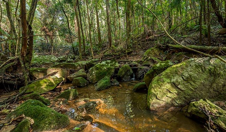 Palm Grove Nature Reserve Image