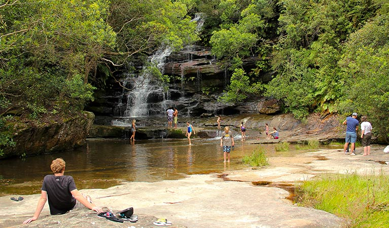 Somersby Falls picnic area Image
