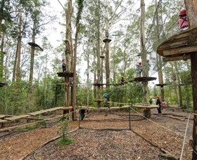 TreeTop Adventure Park Central Coast Logo and Images