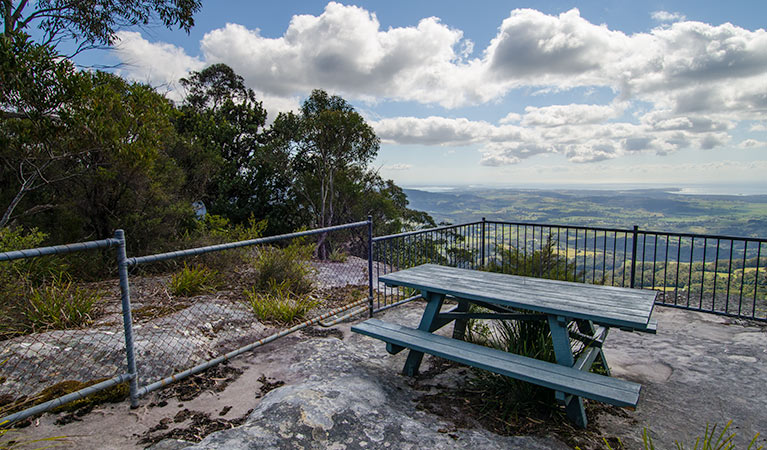 Illawarra lookout walking track Logo and Images