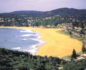 Avoca Beach Logo and Images