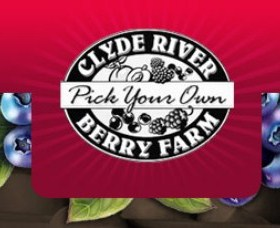 Clyde River Berry Farm Logo and Images