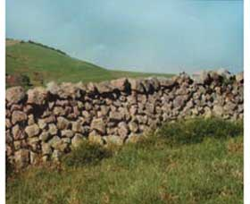 Historic Dry Stone Walls Logo and Images