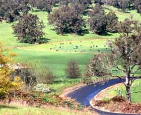 Blackwood River Tourist Drive