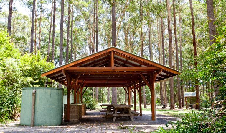 Bongil picnic area Logo and Images