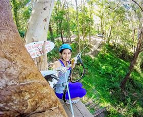 TreeTop Challenge Currumbin Logo and Images