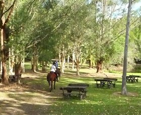 Port Macquarie Horse Riding Centre Logo and Images