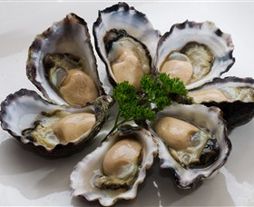 Tathra Oysters Logo and Images