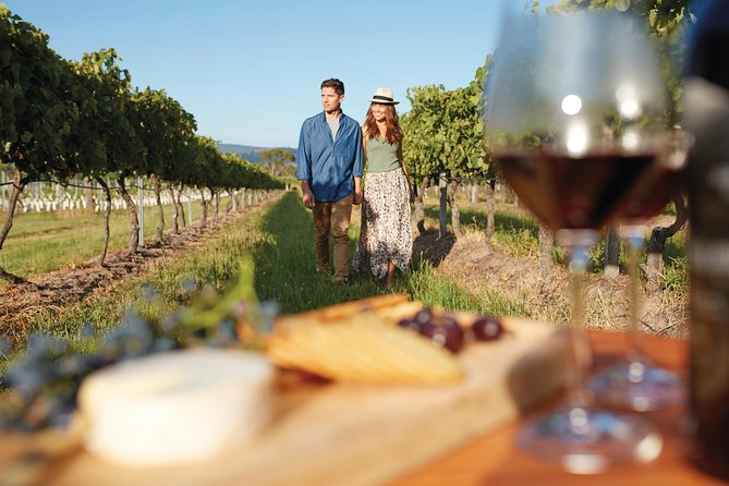 Full-Day Tastes of the Scenic Rim Luxury Small Group Tour from Brisbane Logo and Images