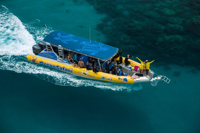 Ocean Safari Great Barrier Reef Experience in Cape Tribulation Logo and Images