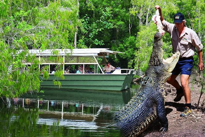 Crocs, Creatures and Culture Tour ex Cairns Logo and Images