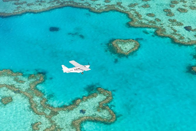 Great Barrier Reef Scenic Flight Logo and Images