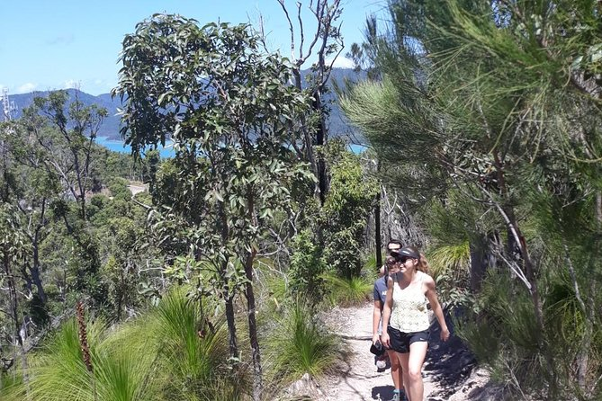 Scenic Guided Walk up Mt Rooper for Best Whitsunday Views from Airlie Beach Logo and Images
