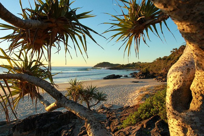 Overnight Tweed Coast Camping and Surfing Getaway From The Gold Coast Logo and Images