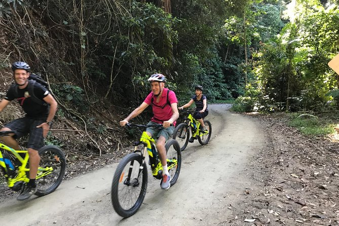 Electric Mountain Bike Rainforest Eco Tour Logo and Images