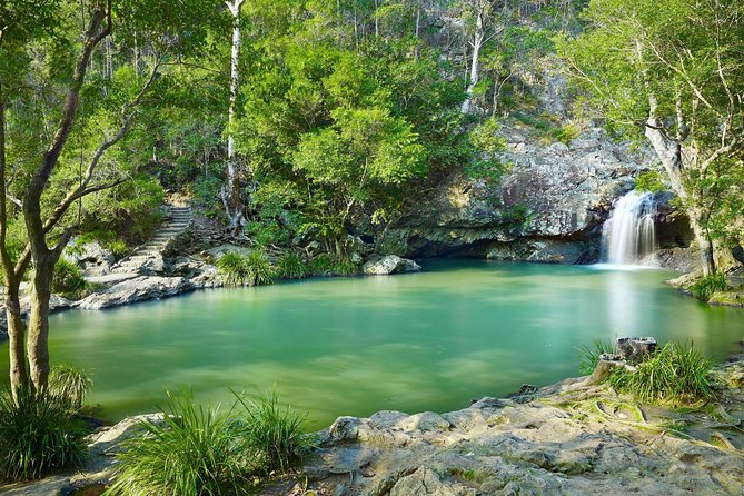 Explore Maleny, Montville, and take a swim under the waterfall. Logo and Images