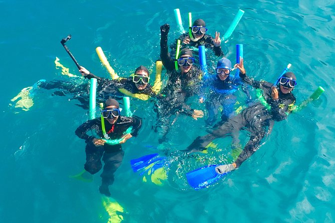 Glass-bottom boat tour with Whitehaven Beach Logo and Images