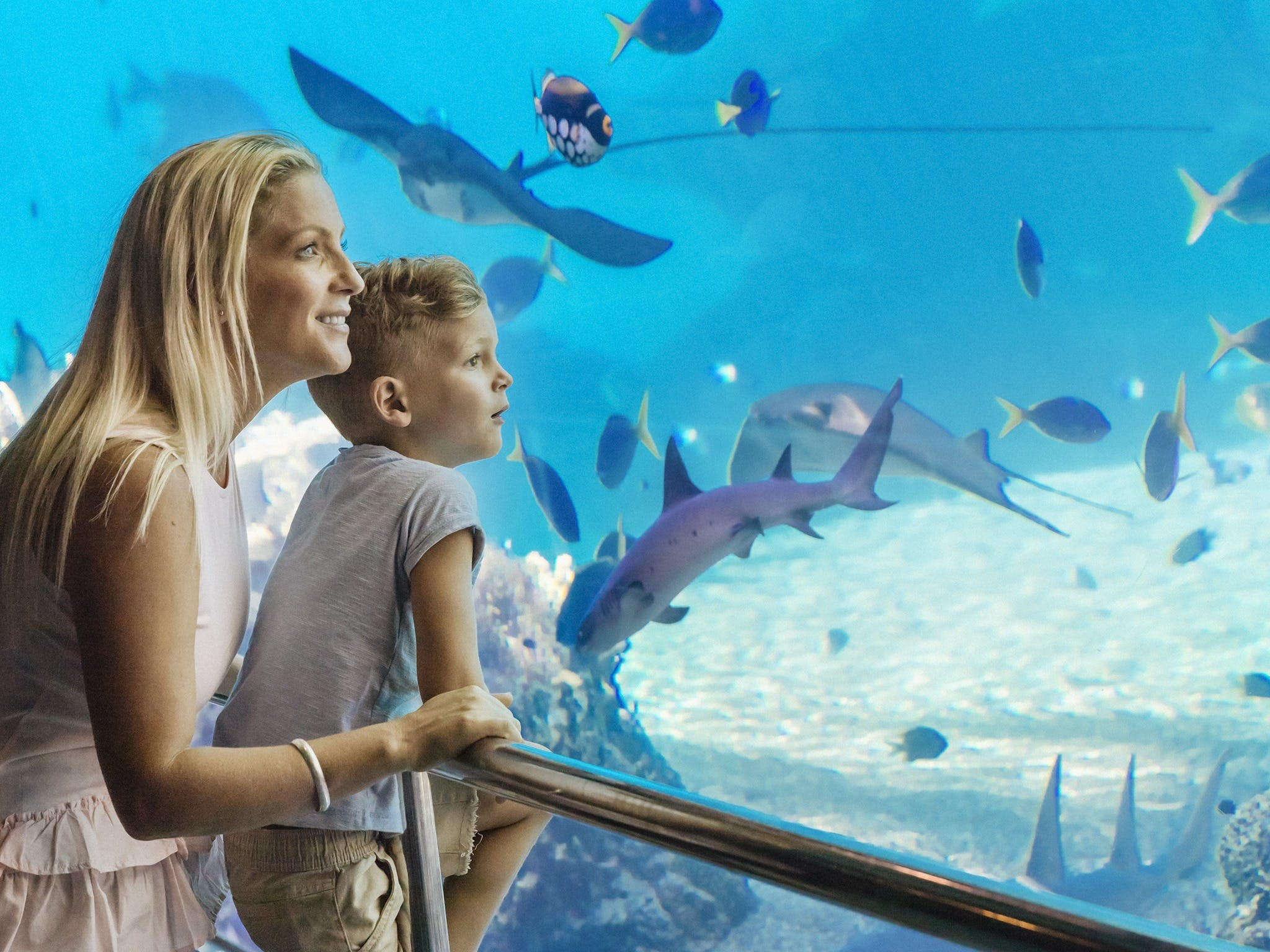 Australia's Sea World Logo and Images