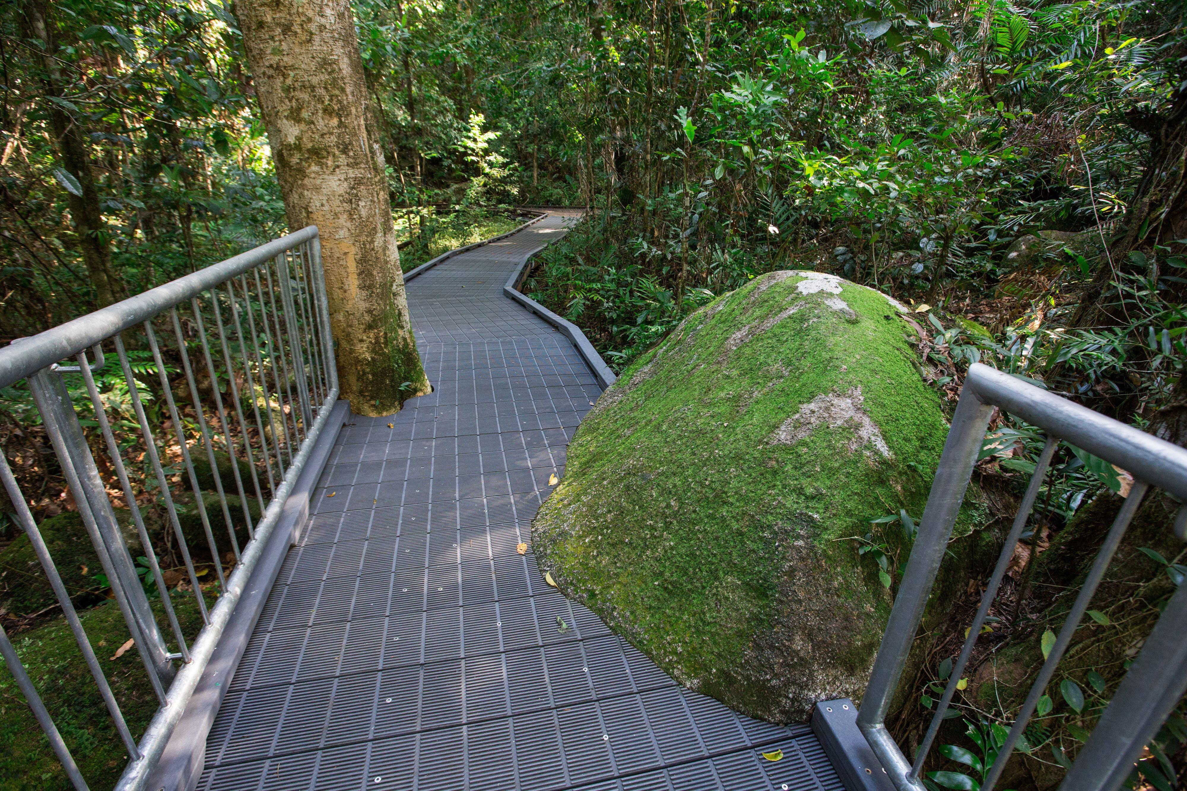 Josephine Falls walking track, Wooroonooran National Park Logo and Images