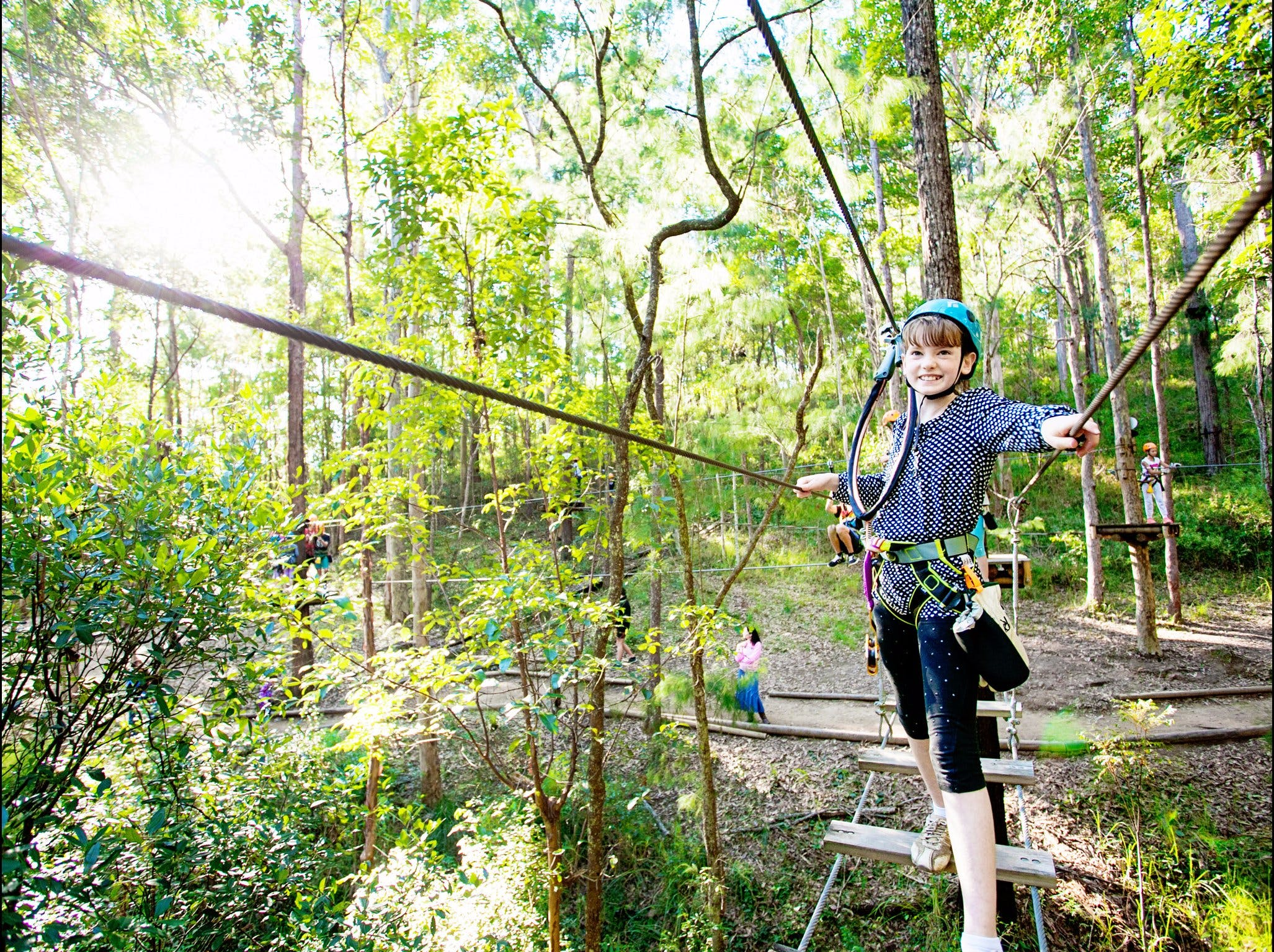 TreeTop Challenge Logo and Images