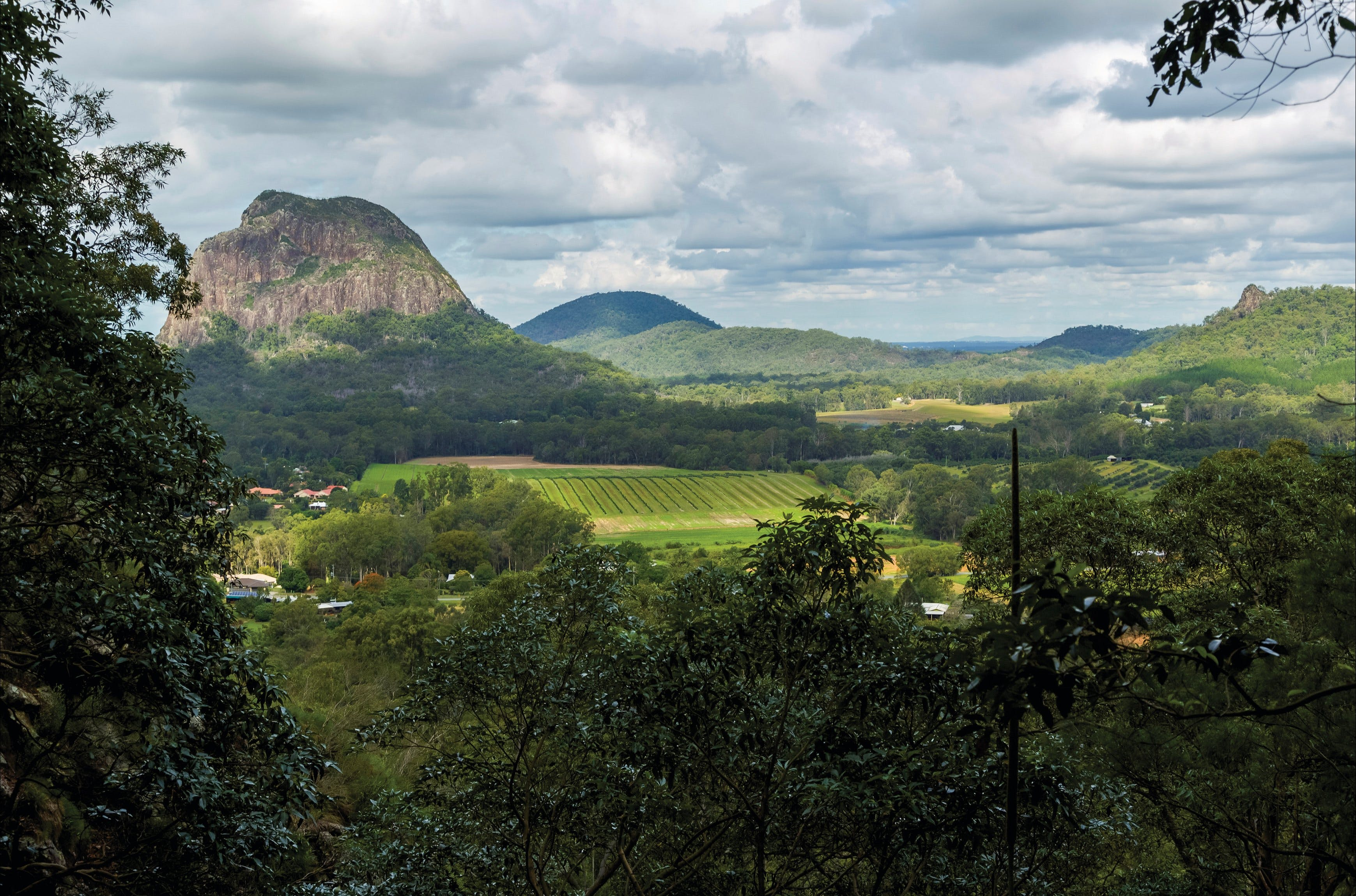 Mount Ngungun summit walking track, Glass House Mountains National Park Logo and Images