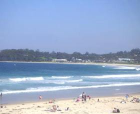 Mollymook Surf Beach Logo and Images
