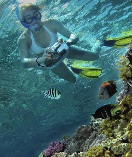Calypso Reef Charters Image