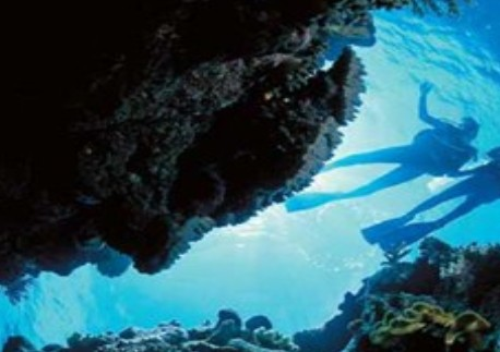 Deep Sea Divers Den Image