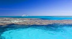 Reef Jet Cruises Image