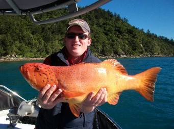Gone Fishing by Coral Sea Fishing Charters Airlie Beach Image