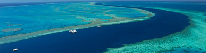 Cruise Whitsundays Image