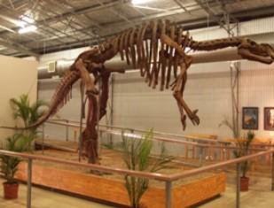 Australia's Dinosaur Trail Image