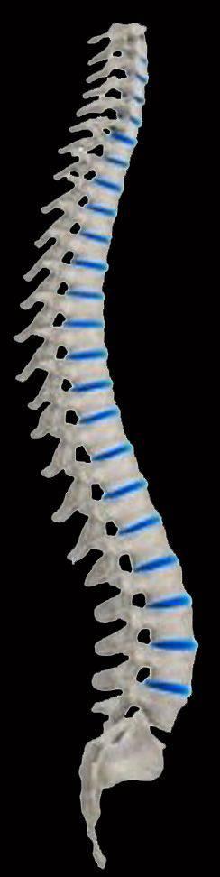 Glasco Chiropractic