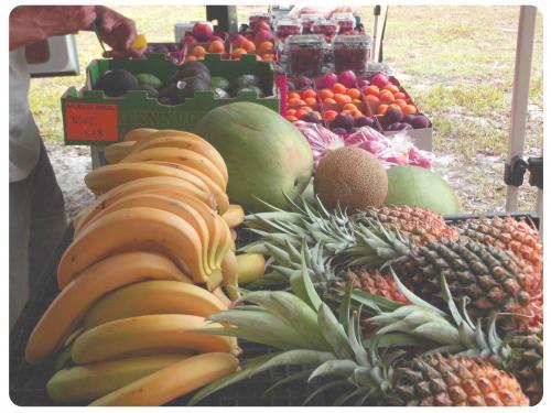 Maluka Produce–Fruit & Veg Wholesale/Retail
