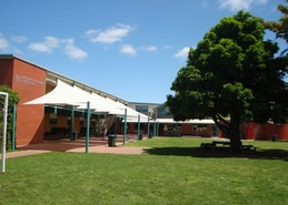 Immaculate Heart of Mary Primary School Logo and Images