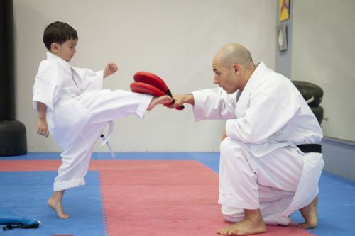 Karate Kids Perth Logo and Images