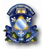 Academy of Mary Immaculate Logo and Images