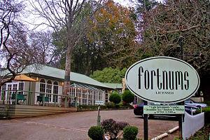 Fortnums Restaurant Logo and Images