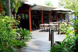 Lizard's Outdoor Bar and Grill Image