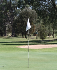 Inverell Golf Club Logo and Images