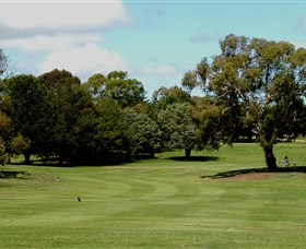 Cooma Golf Club Logo and Images