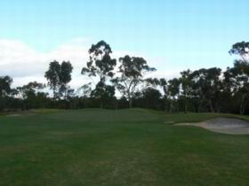 Naracoorte Golf Club Logo and Images