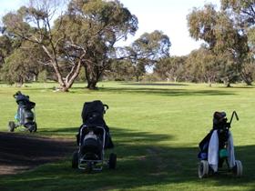 Minlaton Golf Club Logo and Images