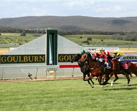Goulburn and District Racing Club Logo and Images