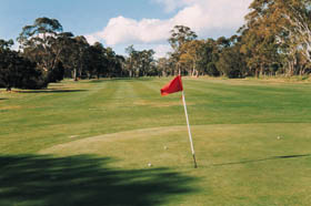 Echunga Golf Club Incorporated Logo and Images