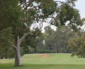 Tocumwal Golf Club Logo and Images